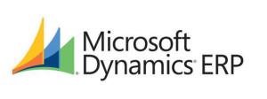 microsoft_dynamics-100042797-large